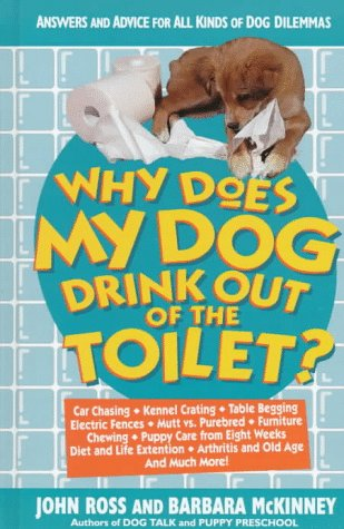 Why Does My Dog Drink Out of the Toilet: Answers a...