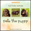 Pete The Puppy