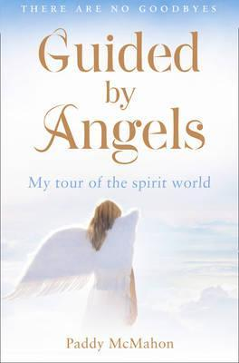 Guided by Angels My Tour of the Spirit World